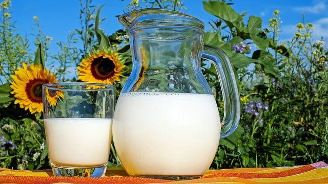 減量中もタンパク質は体重の2倍のグラム数は摂取すべき【不足分はプロテイン】